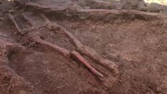 В Карелии обнаружили загадочное массовое захоронение вековой давности