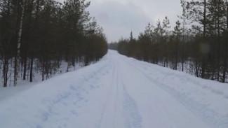 Через Онегу и Карелию: в Архангельской области планируют возвести трассу до Финляндии