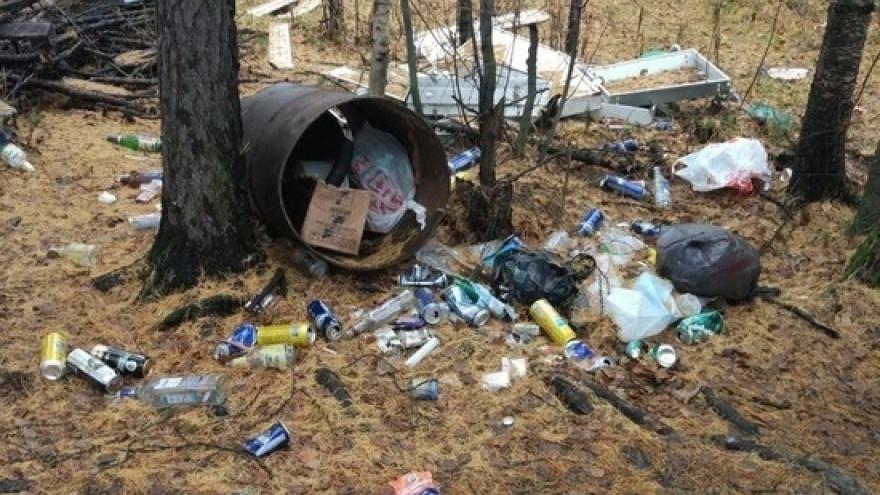 Комфортная среда «по Тарко-Салински»