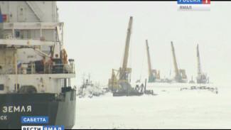 В зимнюю навигацию в порту Сабетта будут работать шесть ледоколов