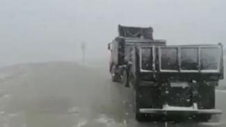 На Колыме выпал первый снег: о фермерских хитростях для спасения урожая