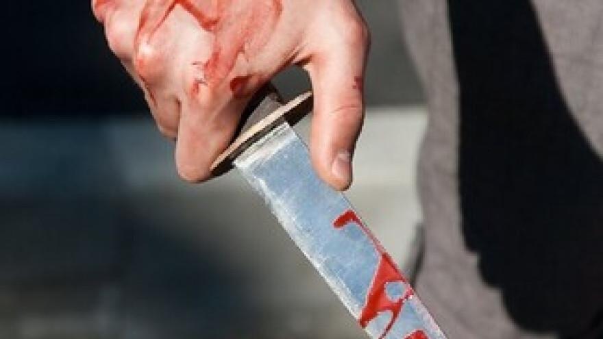 Встретил гостя во всеоружии: житель Ямальского района напал с ножом на односельчанина