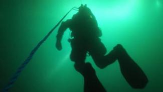 Крабы и актинии среди затонувших кораблей: невероятной красотой манит дайверов магаданская бухта Нагаева