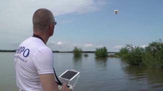 С помощью дрона, на КАМАЗе и судне. Ученые отправились в Амурскую экспедицию