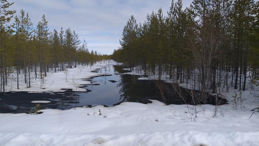 Ямальская прокуратура начала проверку после разлива нефтепродуктов на Суторминском месторождении