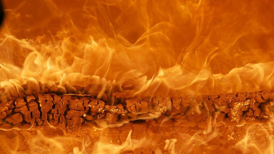 11 спасателей тушат природный пожар в Приуральском районе