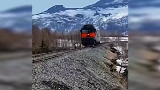 «Тянут многотонный паровоз»: жители Воркуты засняли на видео оленей, бегущих по ж/д путям