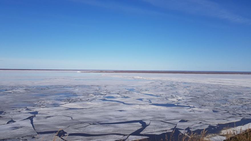 Ледоход на Ямале 2021: 14 мая зафиксировали подвижки в районе Салехарда
