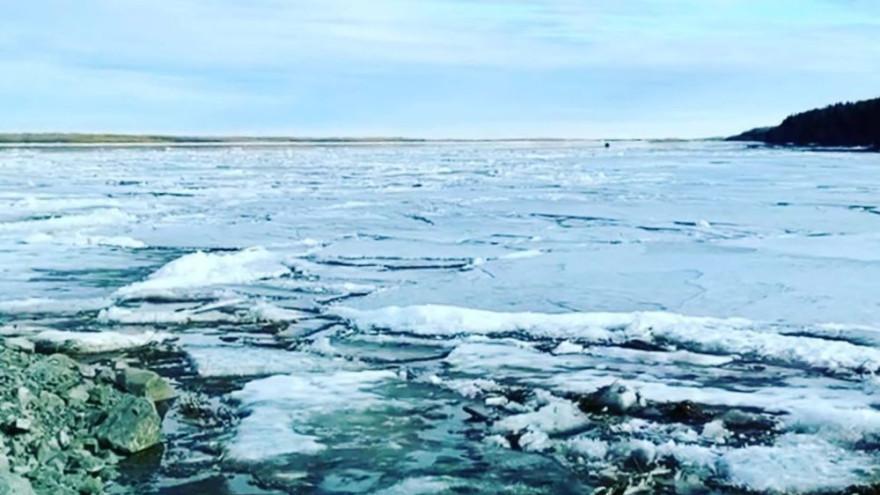 Ледоход на Ямале 2021: свежие данные на 12 мая