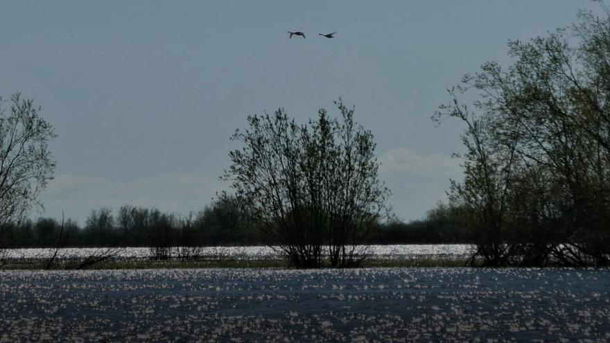 Времена года – весна: вот так для северян звенит первый звоночек нового лета