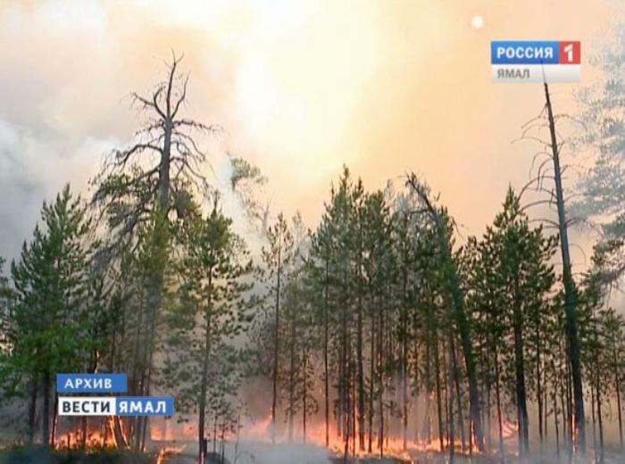Площадь лесных пожаров наЯмале возросла  до46,8 тыс. гектаров