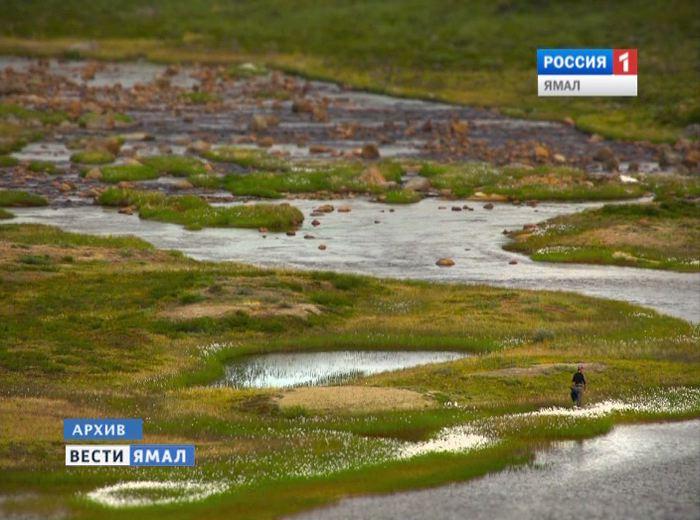 В Арктике открыта залежь с извлекаемыми запасами в 26 млн тонн