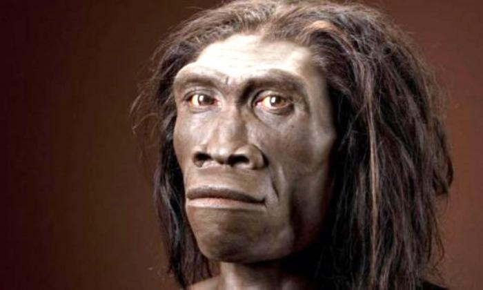Предки современного человека вымерли из-за собственной лени