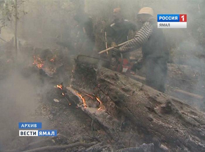 На Ямале вспыхнул первый лесной пожар