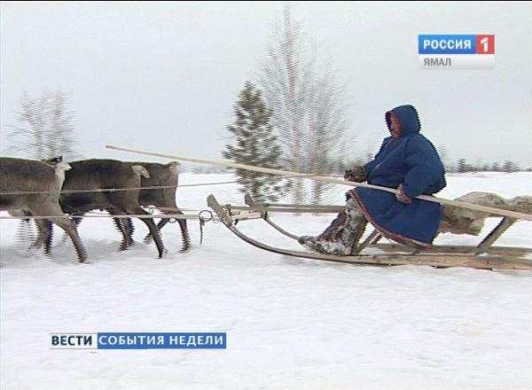 Коренные народы Ямала