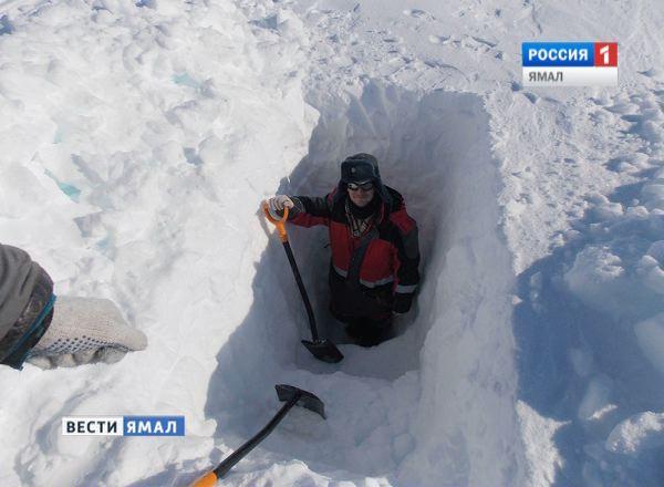 Ледник Семенова - Тян-Шаньского