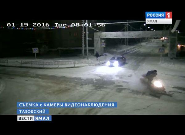 На Ямале похитителей рогов сняли на видеокамеру