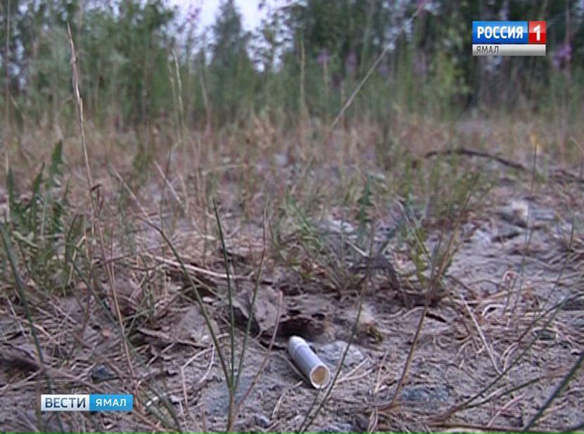 Засутки в 5-ти районах Ямала найдены новые лесные пожары