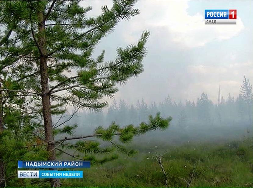 Площадь природных пожаров наЯмале возрастает