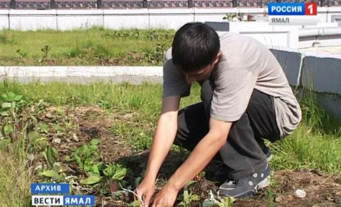Сколько предприятий на Ямале недоплачивало работающим детям?