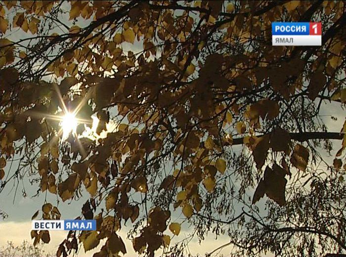Гидрометцентр РФ: на Ямал надвигается жара