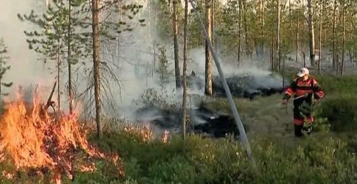 На Ямале увеличили силы пожаротушения