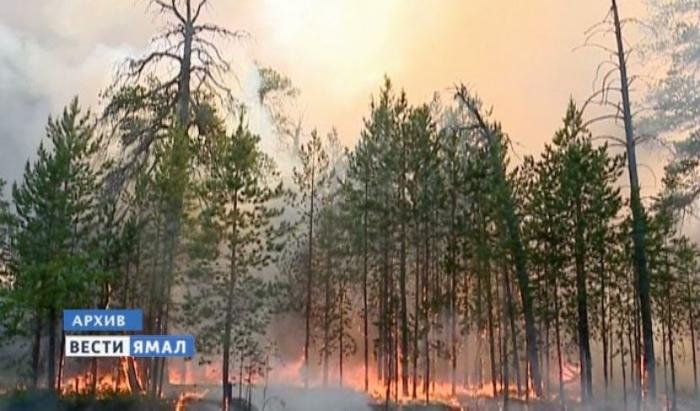 Как дачники Муравленко соблюдают пожарную безопасность?