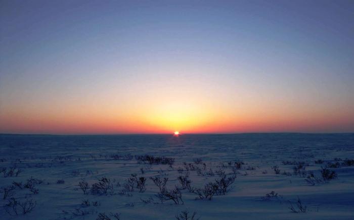 Ямальские власти помогут семье погибшего оленевода