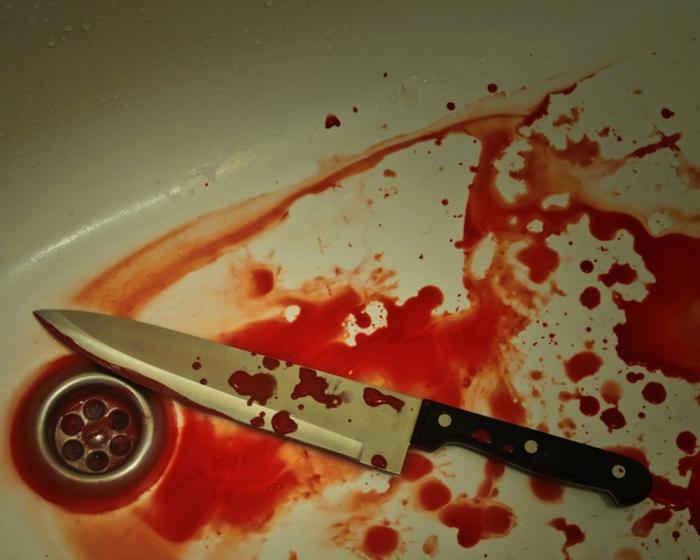 Жительница Ямала 100 раз ударила ножом приятеля 20июня в17:40
