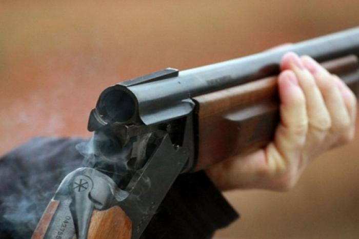 НаЯмале мужчина расстрелял гулявших схозяйкой собак изохотничьего ружья