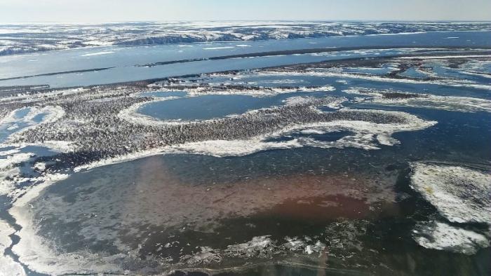 Заказник «Ямальский» с высоты птичьего полета: взгляд на мир другими глазами
