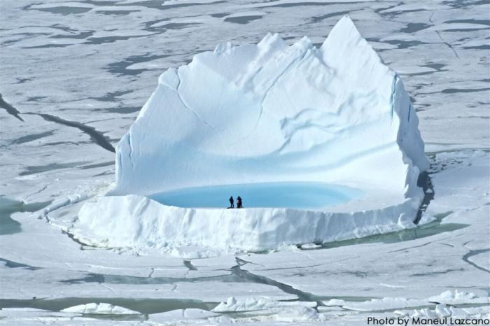 «Арктиковедение»: от встреч с полярниками до праздников белого медведя и северного оленя