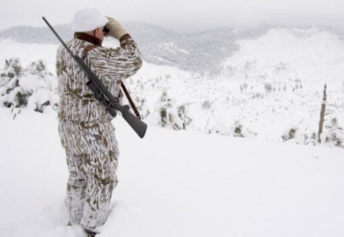Успевайте до 1 апреля: на Ямале распределяют разрешения на добычу бурого медведя