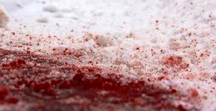 В Тазовском районе произошло леденящее по своей жестокости убийство