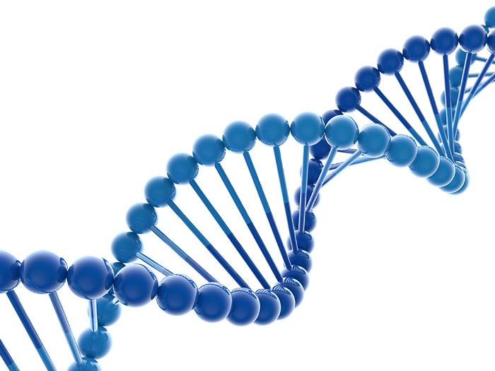 Эксперты обсудили геномику и персонализированную медицину в Арктике
