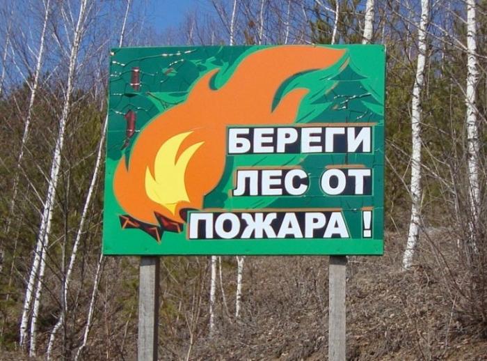 На Ямале ограничили пребывание граждан в лесах