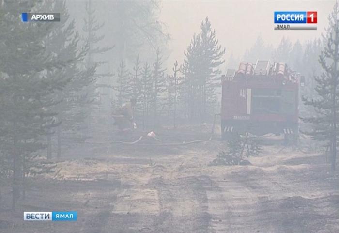 Рядом с Ноябрьском бушует лесной пожар
