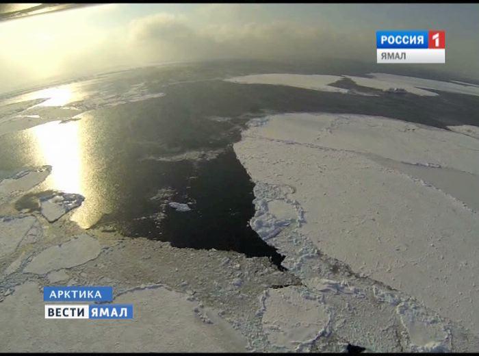 Игорь Кошин примет участие вМеждународном арктическом пленуме