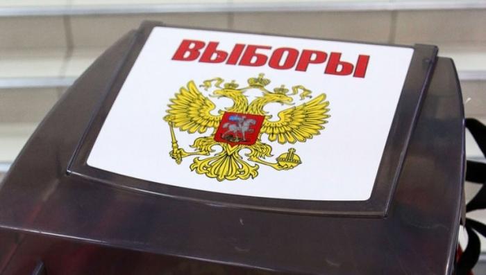 Опубликованы предварительные результаты выборов президента РФ